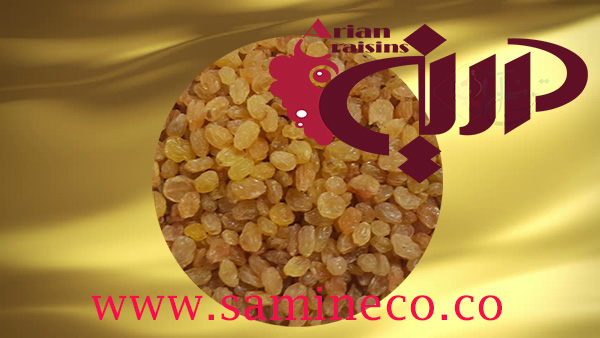 golden raisins gin