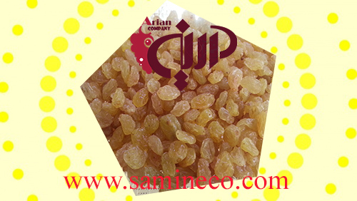 golden raisins 1kg price