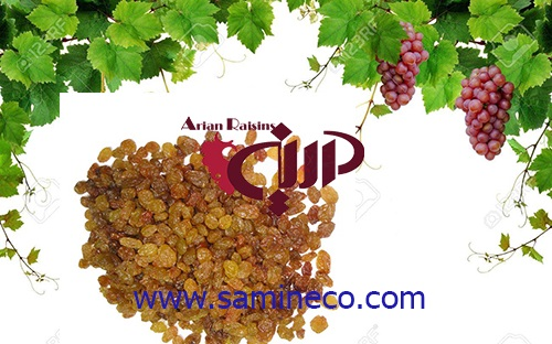 raisins bulk price