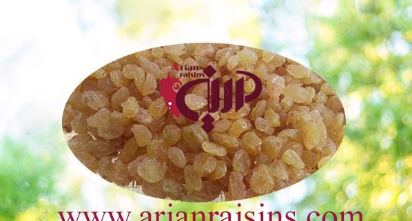 where to buy seedless raisins