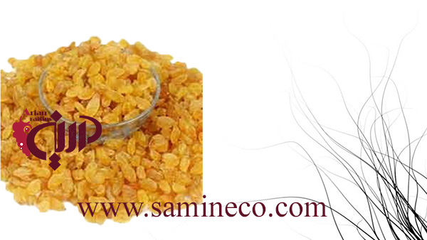 iran golden raisins