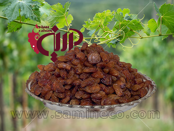 best quality raisins