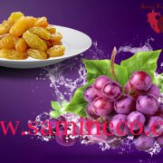 Specifications golden raisins iran