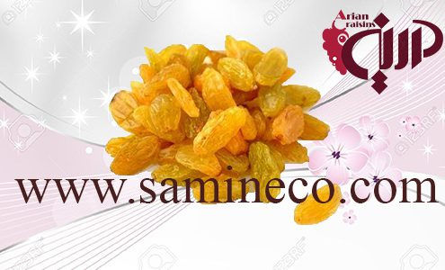 Buy organic golden raisins