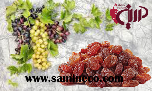 Exports iran malayer raisin