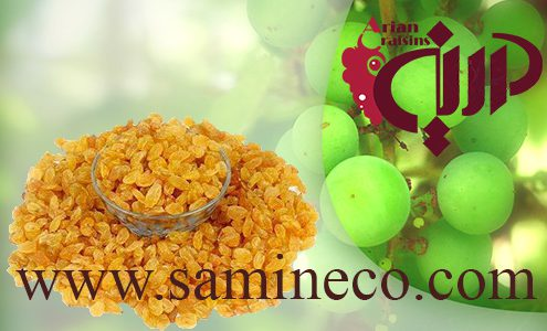 Golden Raisins for sale to major buyers worldwide