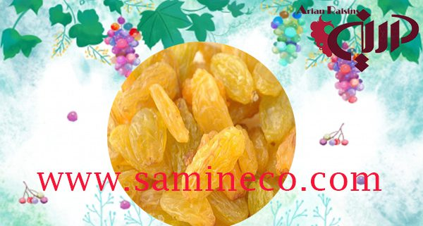 Wholesale raisins