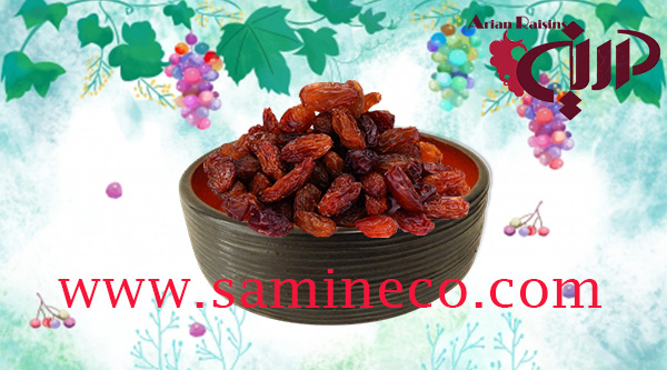 bulk raisins wholesale