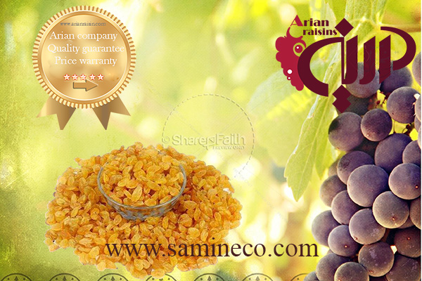 golden raisins iran