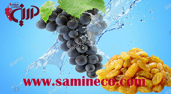 order raisin wine