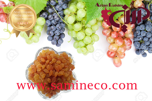 raisins wholesale market