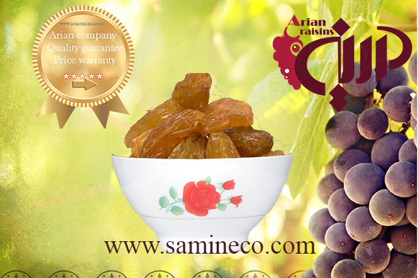 top raisins exporters