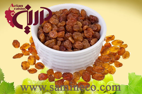 golden raisins exporters