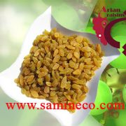 Fresh bulk raisins wholesale suppliers
